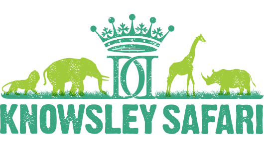 where to go in the North West this half term. Knowsley Safari