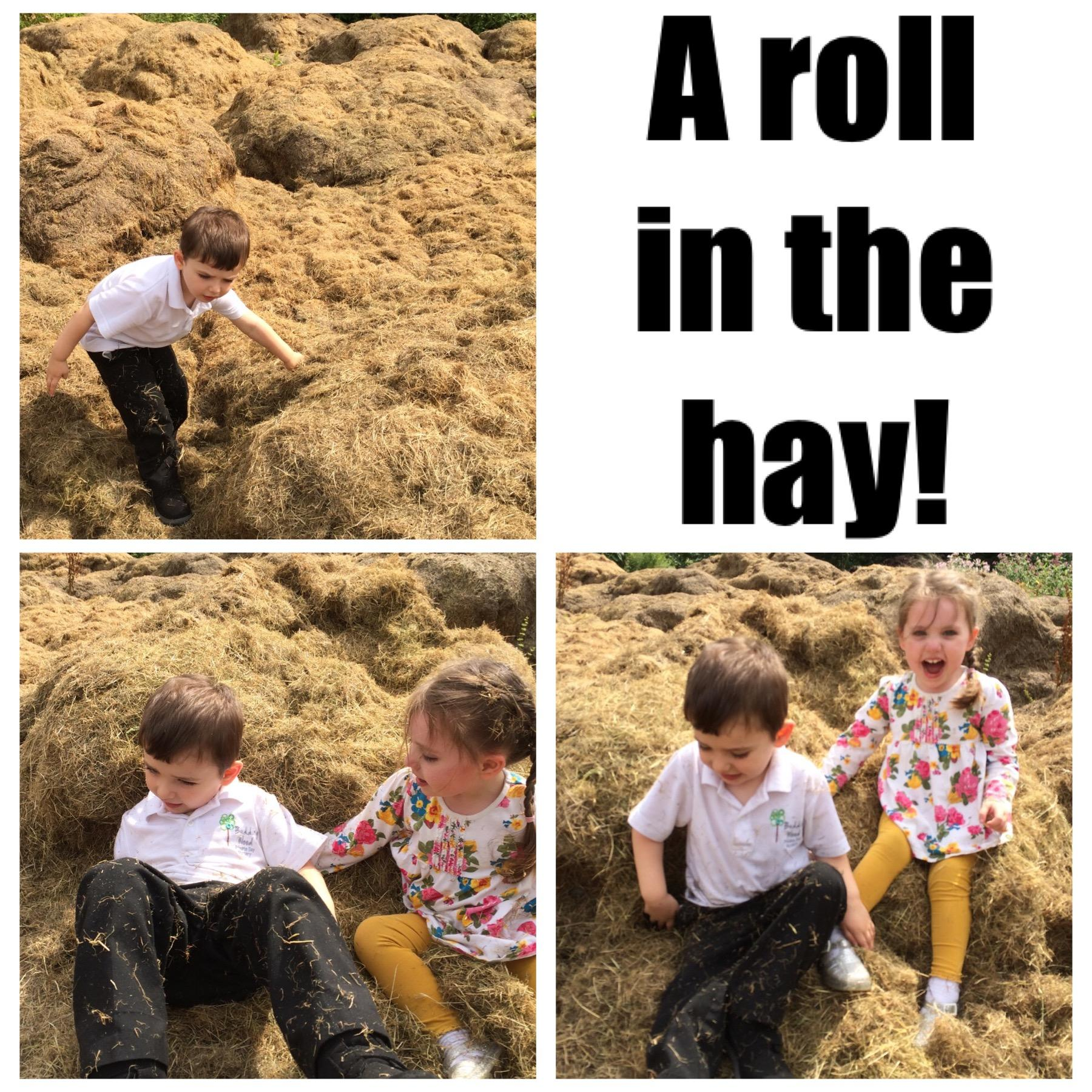 The kids having their first ever roll in the hay