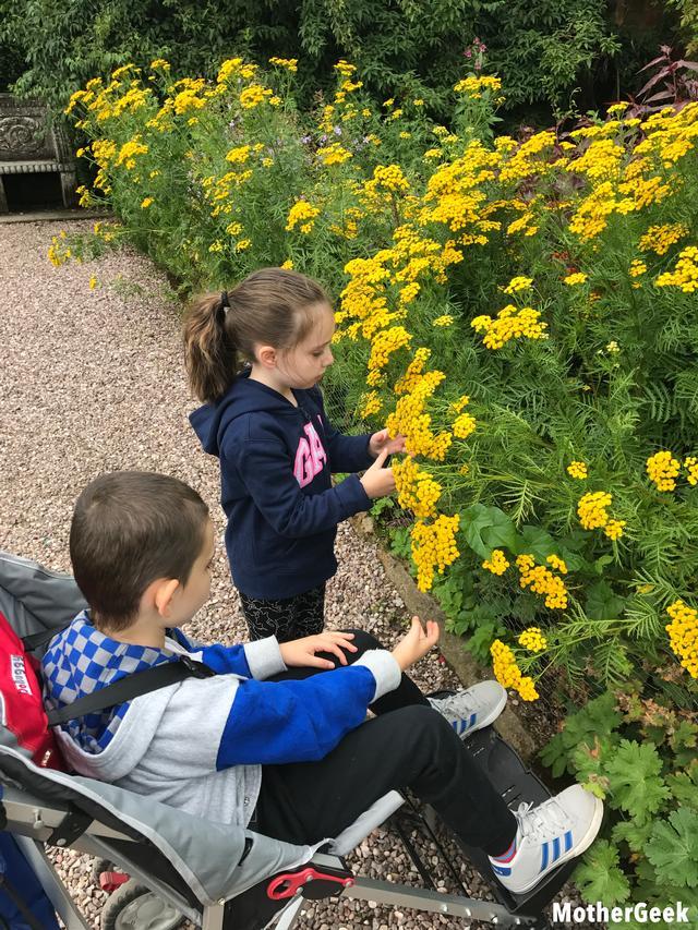 Tatton Park Gardens - Flowers
