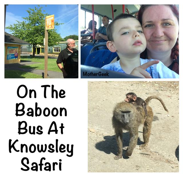 Is Knowsley Safari Park Autism Friendly? - Us on the baboon bus