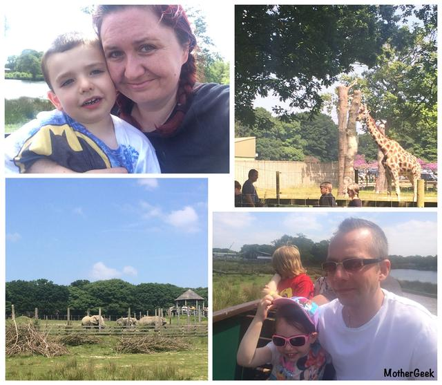 Is Knowsley Safari Park Autism Friendly? - On The Train