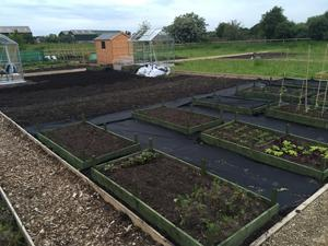 plans for the allotment - raised beds